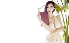 美女模特李颖芝桌面壁纸