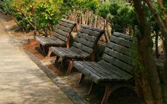 宁静花园桌面壁纸