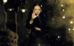 《一代宗师》章子怡美女壁纸