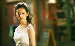 刘亦菲功夫之王美女壁纸