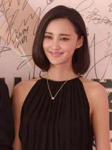 张歆艺王菲领衔堪称中国好前妻的十大女星