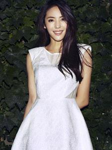 演员蔡文静丛林主题写真 一袭白裙清新可人