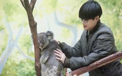 李宇春与树袋熊《奇妙的朋友》壁纸